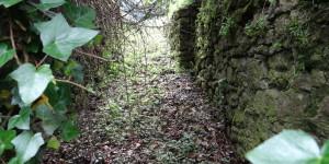 Pathway?