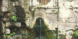 Watering Fountain