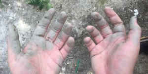 Logan's Hands